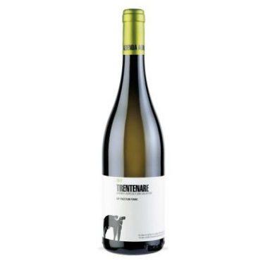 vino-bianco-fiano-trentenare-igp-paestum