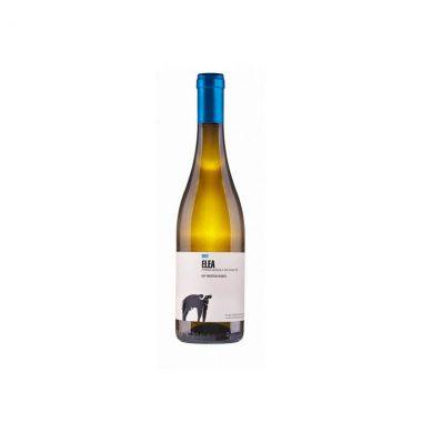 vino-bianco-fiano-elea-igp-paestum